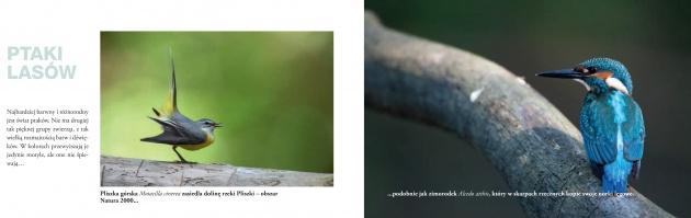 """Folder """"Przyroda w obiektywie"""""""